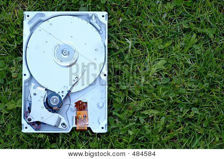 Wet Hard Disk