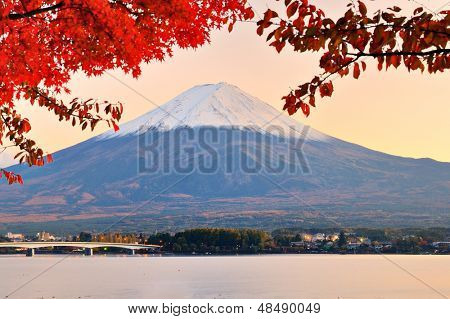 Mt. Fuji with fall colors in japan in the late afternoon.