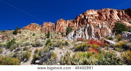 Wildflowers And Rocky Cliffs Of Utah