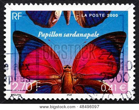 Postage Stamp France 2000 Agrias Sardanapalus, Butterfly