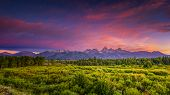 image of blacktail  - Colorful summer sunrise at Blacktail Ponds Overlook in Grand Teton National Park WY - JPG