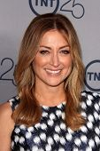 LOS ANGELES - JUL 24:  Sasha Alexander arrives at TNT's 25th Anniversary Party at the Beverly Hilton