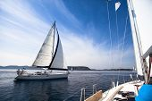pic of sails  - Regatta on the sea - JPG