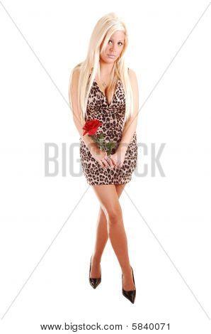 Menina bonita no vestido curto.