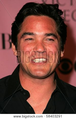 LOS ANGELES - NOVEMBER 16: Dean Cain arriving at The Victoria's Secret Fashion Show at Kodak Theatre on November 16, 2006 in Hollywood, CA.