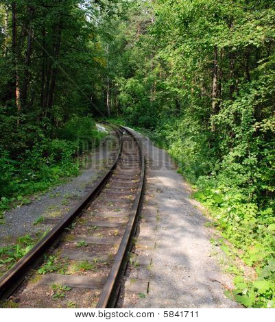 Railroad  Through Forest