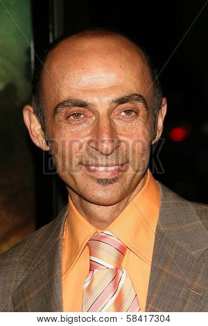 LOS ANGELES - NOVEMBER 28: Shaun Toub at the premiere of