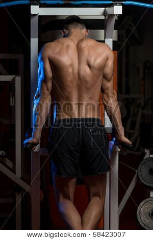 Young Male Bodybuilder Doing Heavy Weight Exercise For Triceps