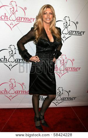 LOS ANGELES - DECEMBER 20: Brande Roderick at the Bench Warmer Trading Cards' Holiday Party and Toy Drive on December 20, 2006 at Area, Los Angeles, CA.