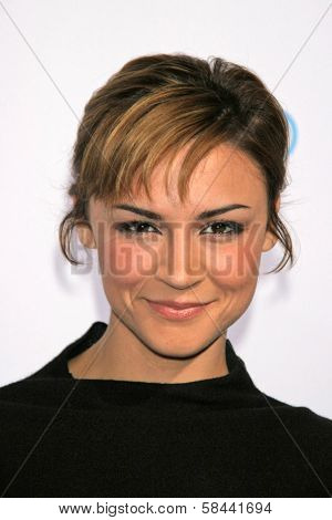 Samaire Armstrong at the party celebrating the launch of Nintendo's Game Console Wii. Boulevard 3, Los Angeles, California. November 16, 2006.
