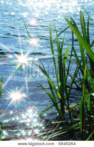 Sun Light Sparkle na onda