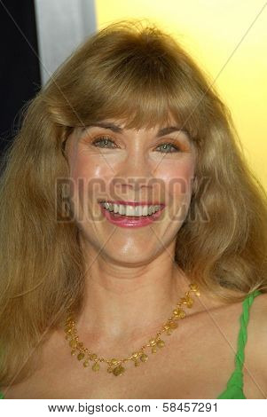 HOLLYWOOD - DECEMBER 13: Barbi Benton at the world premiere of