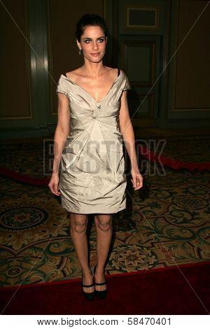 PASADENA - JULY 22: Amanda Peet at the NBC TCA Press Tour at Ritz Carlton Huntington Hotel on July 22, 2006 in Pasadena, CA.