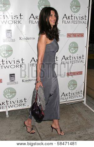 LOS ANGELES - NOVEMBER 12: Hilary Shepard at the 2006 Artivists Awards at Egyptian Theatre November 12, 2006 in Hollywood, CA.