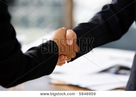 Handshake Between Two Businesswomen