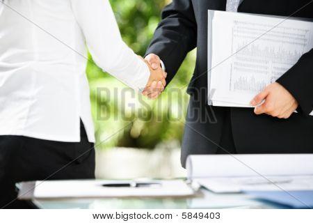 Handshake Between Businessman And Businesswoman