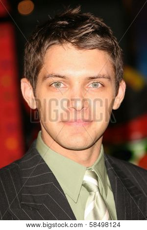 HOLLYWOOD - NOVEMBER 12: Ryan Devlin at the world premiere of