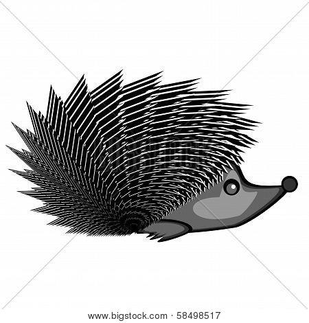 A Funny Hedgehog