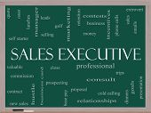 Sales Executive Word Cloud Concept On A Blackboard