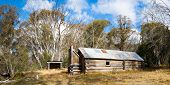 stock photo of bogong  - McNamara Hut  - JPG