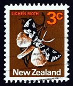 Postage Stamp New Zealand 1970 Lichen Moth