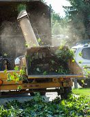 picture of arborist  - Wood Chipper Shredding a Tree into a Truck - JPG