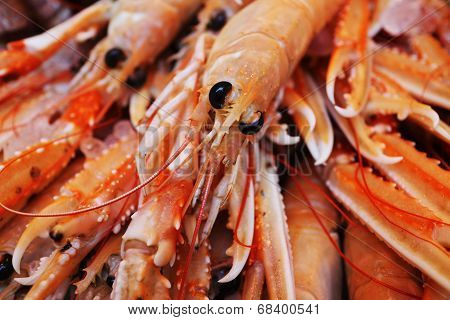 King prawns closeup