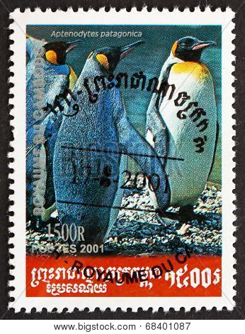 Postage Stamp Cambodia 2001 King Penguin