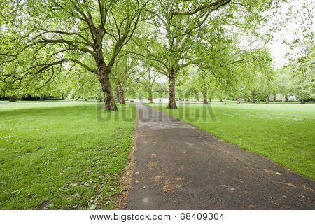 View of walkway and trees in park