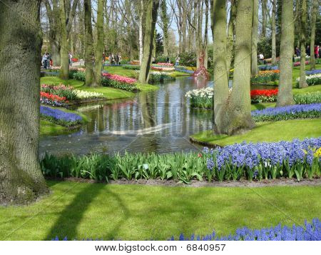 Scenic Garden With Colorful Spring Flowers And Pond In  Dutch Spring Garden  (keukenhof, The Netherl
