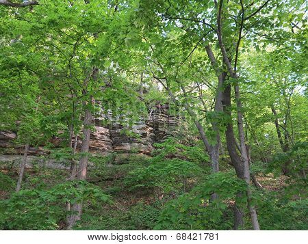 Box Canyon and beautiful spring time trees at Starved Rock State Park