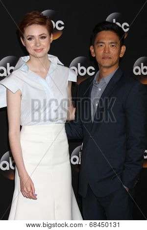 LOS ANGELES - JUL 15:  Karen Gillan, John Cho at the ABC July 2014 TCA at Beverly Hilton on July 15, 2014 in Beverly Hills, CA