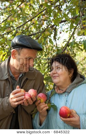 Middleaged man and woman stand under tree and hold apples in hands