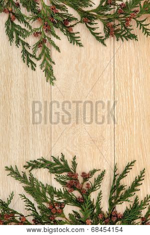 Cedar cypress leyland leaf sprigs with pine cones over light oak background.