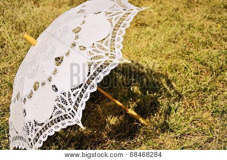Lacy Parasol On The Yellowed Grass