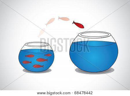 A Smart Red Happy Alert Young Fish Fish Jumping and Escaping From Crowded Small Glass Bowl To Big