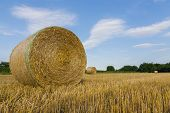 stock photo of threshing  - agricultural landscape with hay bale in field threshed - JPG