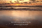 foto of bible verses  - Sunrise over the ocean with Psalms 27 - JPG