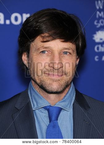 LOS ANGELES - DEC 04:  Tim Guinee arrives to the 2014 Beat The Odds on December 04, 2014 in Culver City, CA