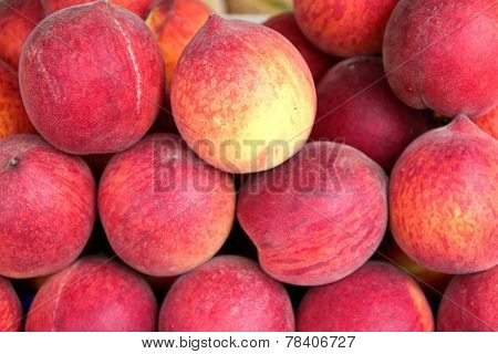 Fruit Stills: Apricots