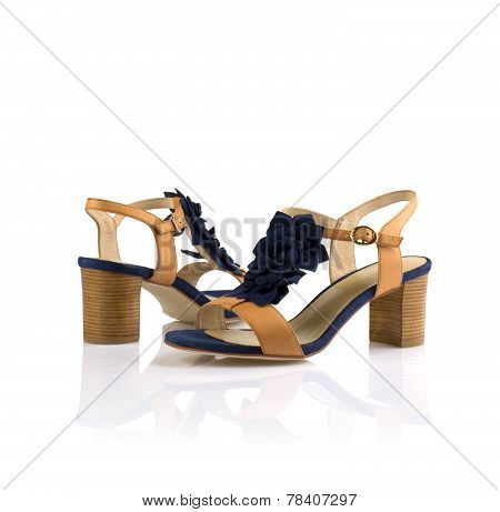 Pair of women shoes