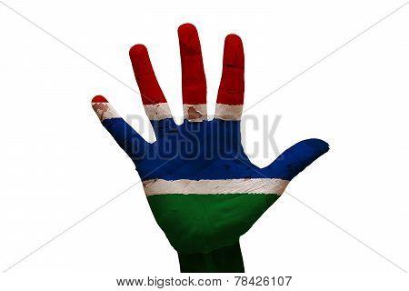 Palm Flag Gambia