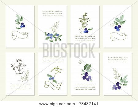 Hand drawn collection of romantic floral invitations. Vector watercolor.   Wedding, marriage, bridal
