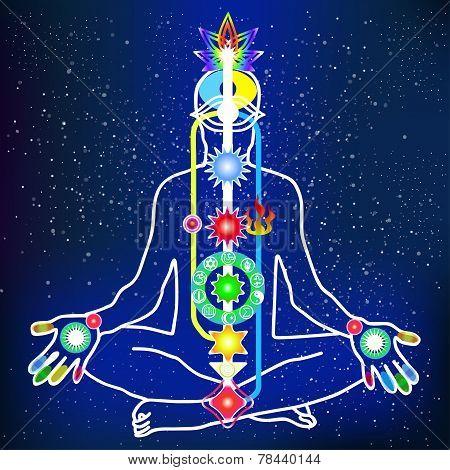 Energy Scheme Of Human Body