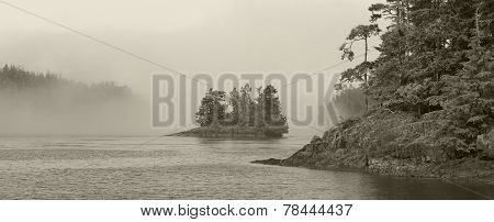 Landscape With Fog In Sepia Tone. Vancouver. Canada