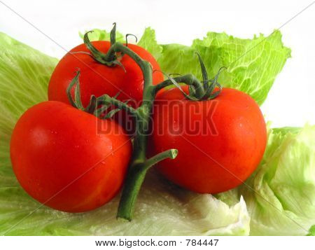 Tomatoes on lettuce