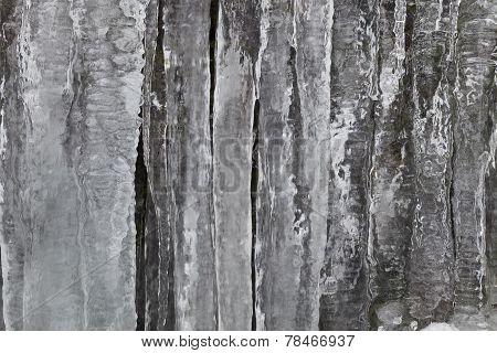 Fringe Of Ice
