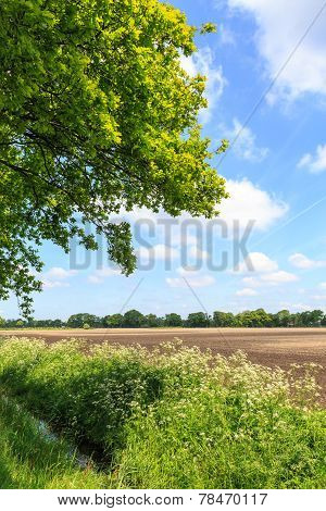 Countryside Landscape With Ditch And Cultivated Farm Field