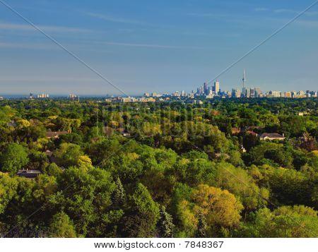 Toronto Landscape