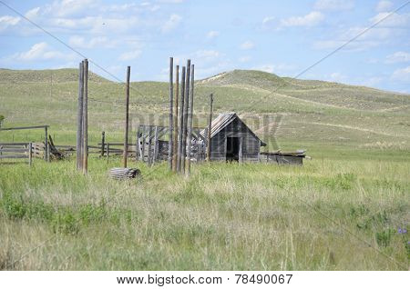 Livestock holding corral